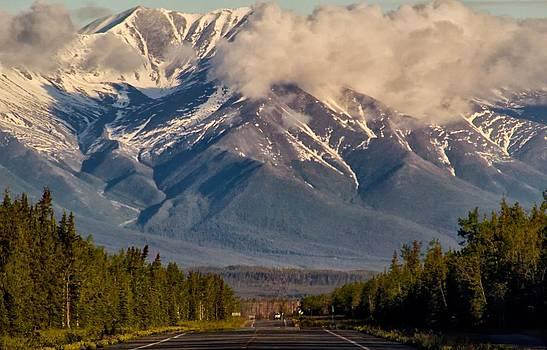 The Alaska Highway Tok Junction Alaska by Michael Rogers