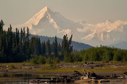 The Alaska Range at Mount Hayes by Michael Rogers