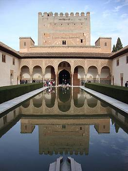 The Alhambra Palace Reflecting Pool 2 by David  Ortiz