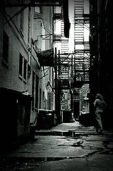 Michelle Calkins - The Alleyway