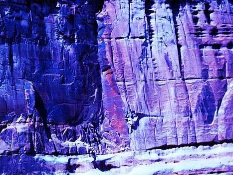 The-Anti-Purple by Karma Gurung