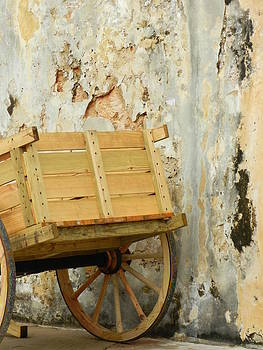 The Apple Cart by Sarah Lamoureux