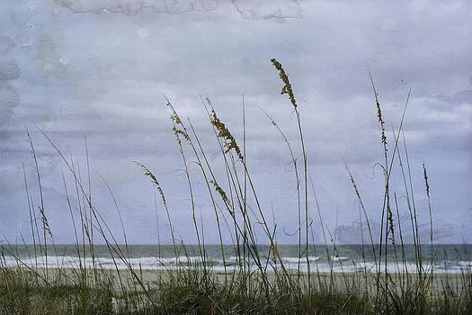 Judy Hall-Folde - The Approach
