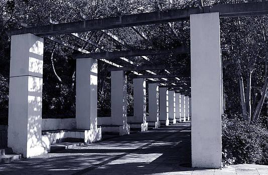 Lorraine Devon Wilke - The Arbor In Black and White