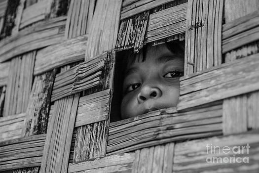 The art life by Phumiphat Thammawong