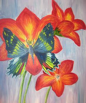 The Artist's Butterfly by Lori Stephens