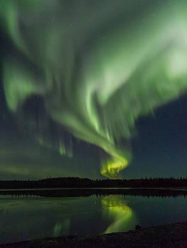 The Aurora Dances by Valerie Pond