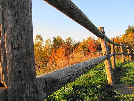The Autumn Fence by Sandra Martin