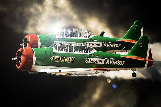 The Aviator by Paul Job
