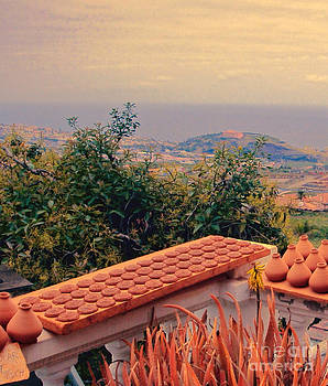 The Balcony View by Anne Pendred