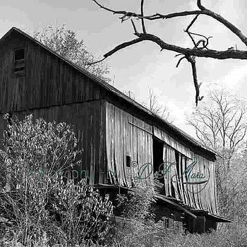 The Barn by Dale Francis Mara