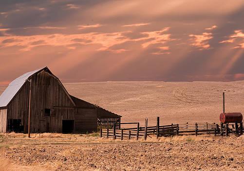 Randall Branham - The Barn Lot