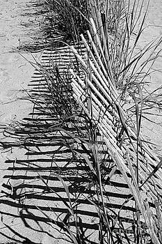 The Beach Fence II by Jay Nodianos