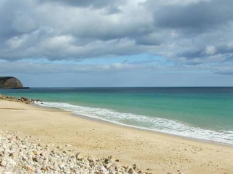 Paula Guy - The Beach