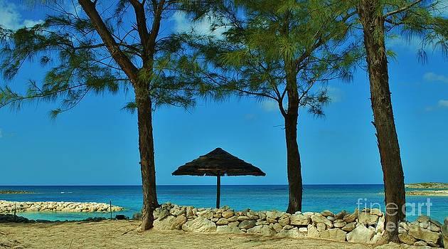 Bob Sample -  Beautiful Caribbean Scene