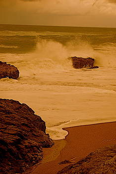 The Beautiful Sea by Richard Hinger