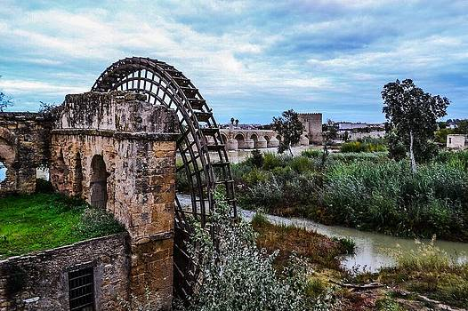 The beautiful Waterwheel and fauna in Cordoba Andalucia Spain by Angela Seager