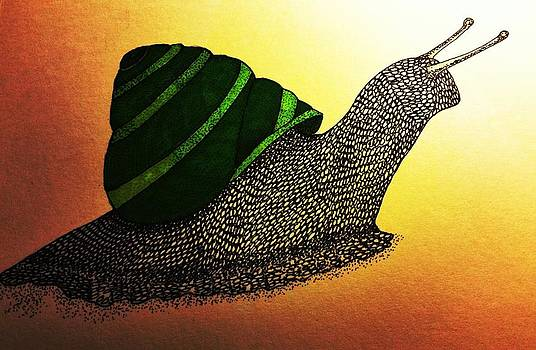 The Beauty of a Snail by Amanda Copenhaver