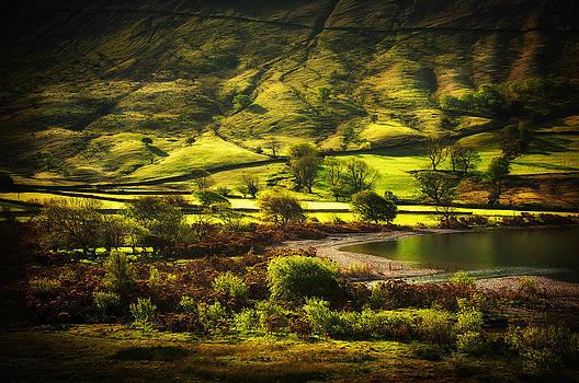 Svetlana Sewell - The Beauty of Hills