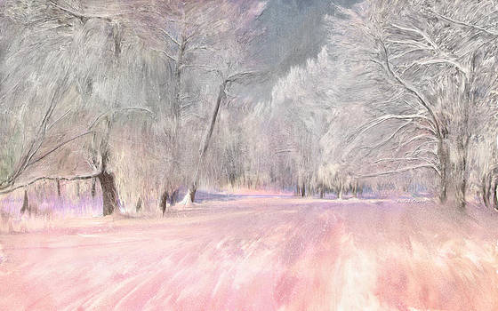 Angela A Stanton - The Beauty of Winter