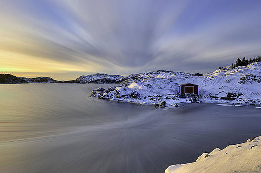 The Beauty Of Winter by Spencer Dove