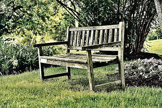 The Bench by David Sanchez
