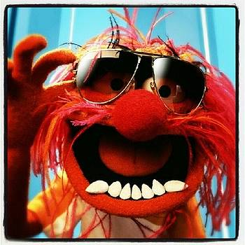 The Best #muppet #animal <3 by Anne Simon