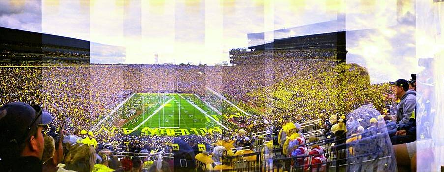 The Big House by Sara Snyder