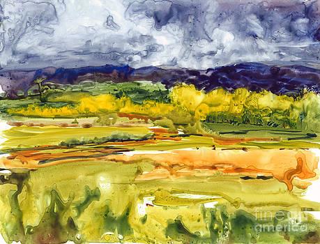The Big Rain by Kim Howard