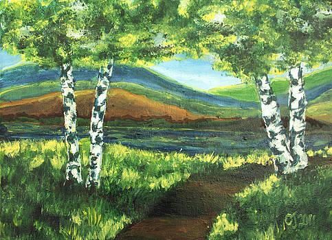 The Birch Twins by Catherine Jeffrey