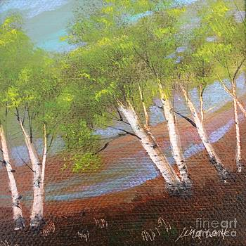 The Birches of Monadnock by Tina Siart Boylan