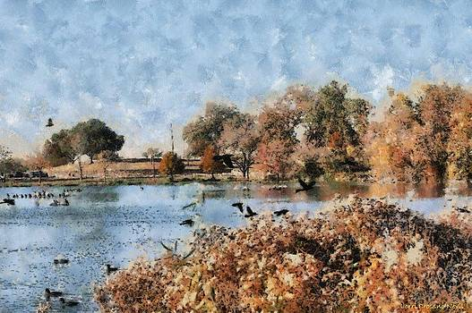 The Birds of White Rock Lake by Lorri Crossno