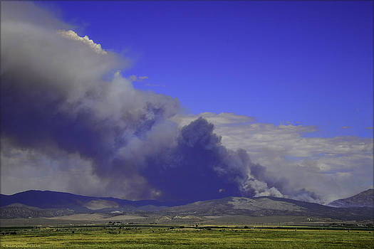 LeeAnn McLaneGoetz McLaneGoetzStudioLLCcom - The Bison Fire burning in northern Nevada near Carson City. 7-6-