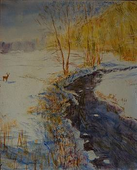 The black creek by Horacio Prada