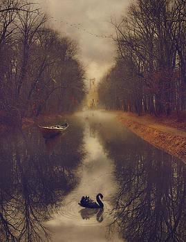 The Black Swan by Kim Zier