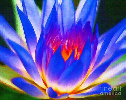 The Blossom of Blue Lotus  by Rames Ratyantarakor