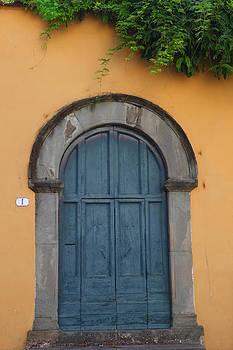 Susan Rovira - The Blue Door