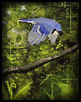 The Blue Jays Land by Andrew Sliwinski