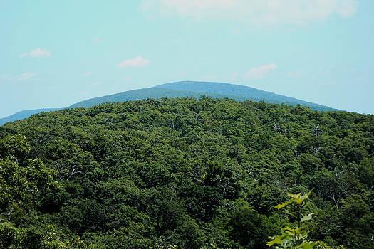 The Blue Ridge by Carolyn Ricks