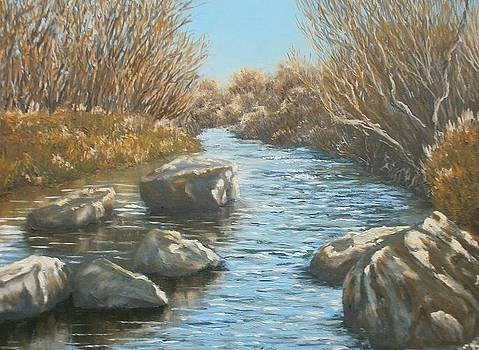 The boulders.Salgir river. by Yaroslav Kuvshinov