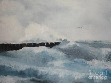 The Breakwater by Steve Knapp