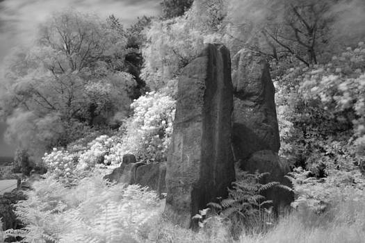 The Bridestones by Derek Sherwin