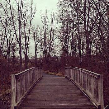 The Bridge Crossing. by Shahin Shaygan