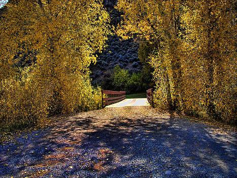 The Bridge  by Gina Cordova