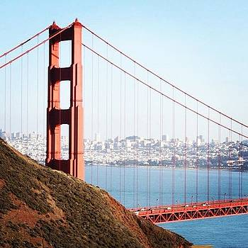 The Bridge by Matt Evans