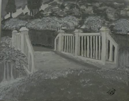 The Bridge by Tanja Beaver