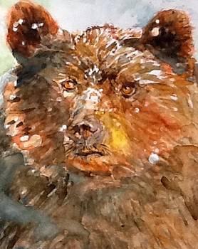 The Brown Bear by Lynn Cheng-Varga