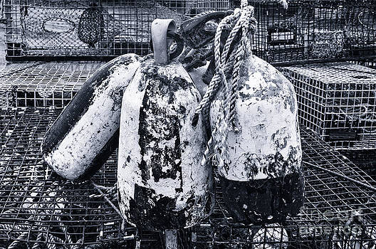 The Buoys and The Lobster Traps in Black and White by Barbara Youngleson