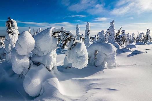 The Burden of Winter by Mikko Karjalainen