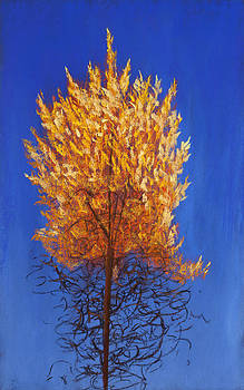 The Burning Bush by Jocelyn Paine